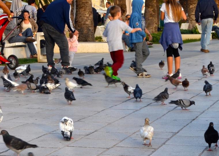 Split, Riva Promenade 4.jpg
