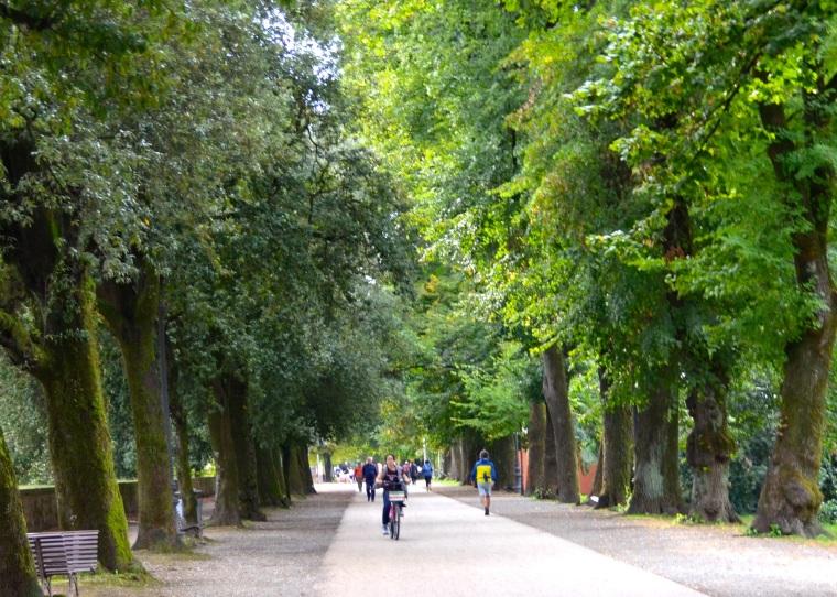 Lucca walls 5