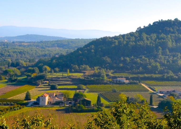 Menerbes, Provence 5