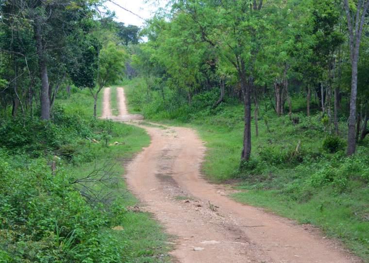 Habarana Hurulu_Eco Park_Sri Lanka.jpg