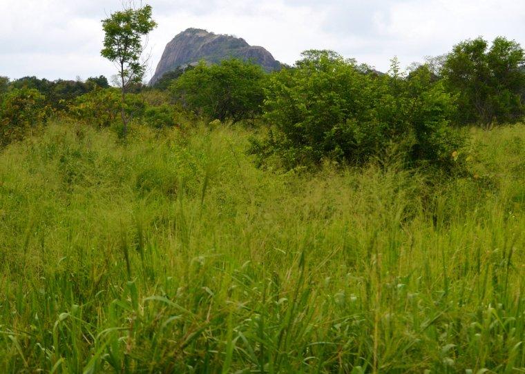 Habarana Hurulu_Eco Park_Sri Lanka_1