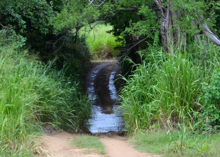 Habarana Hurulu_Eco Park_Sri Lanka_4