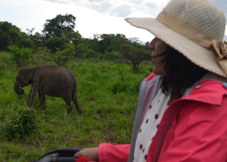 Habarana Hurulu_Eco Park_Sri Lanka_elephant safari_11