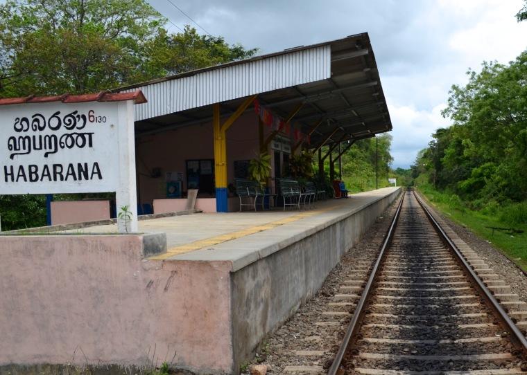 Habarana_Sri Lanka.jpg