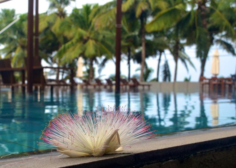 Jetwing Blue_Negombo_Sri Lanka_1