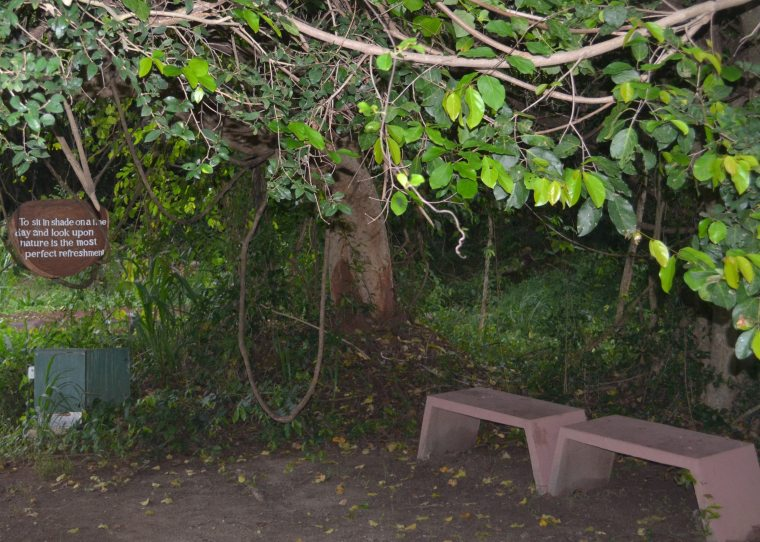 Jetwing Lake Dambulla_lawn_bench_2