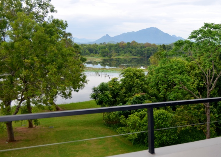 Jetwing Lake Dambulla_room view