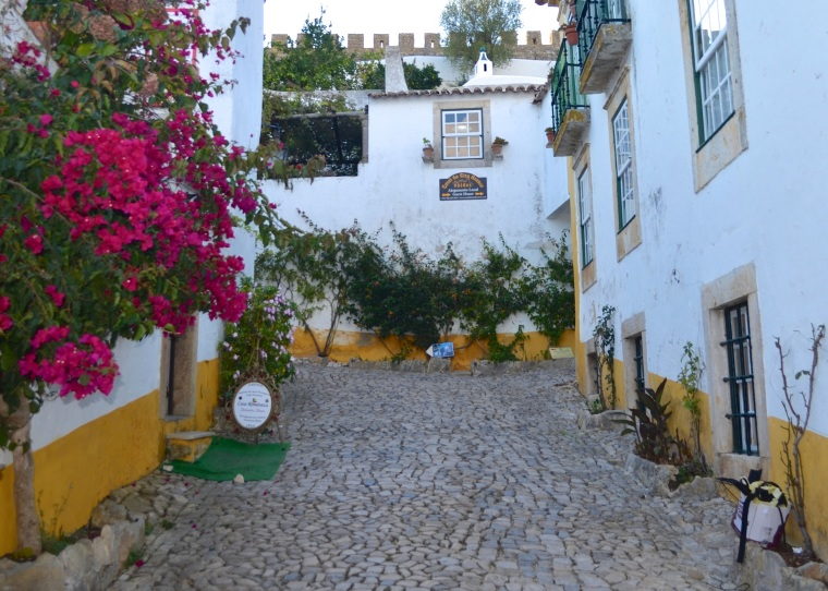 Town streets_Obidos_2.jpg