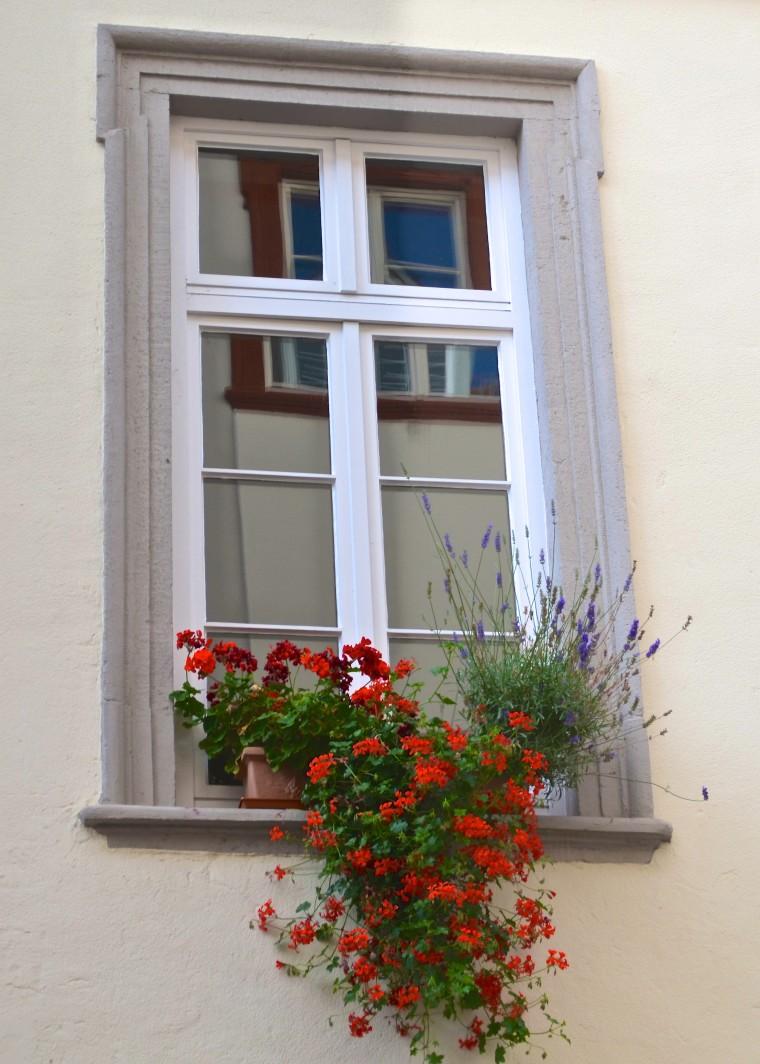 Streets_Heidelberg_2