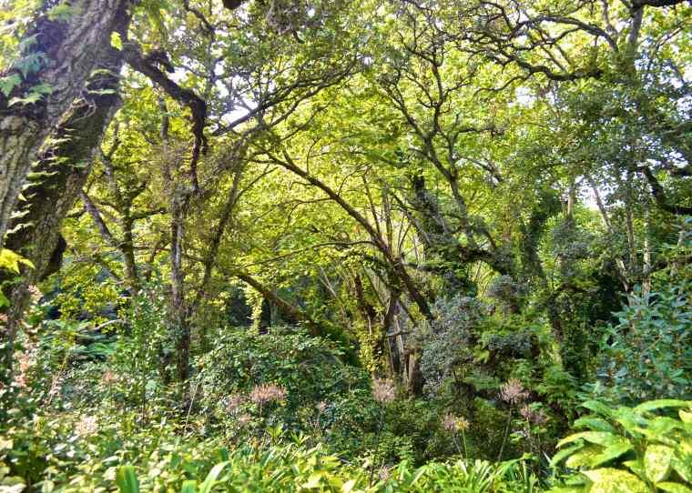 Sintra Cascais Natural Park.jpg