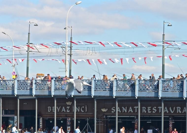 Fishing_Galata Bridge_Istanbul_2