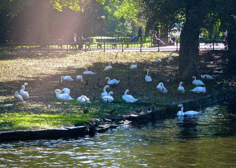 Minnewater Park_Bruges
