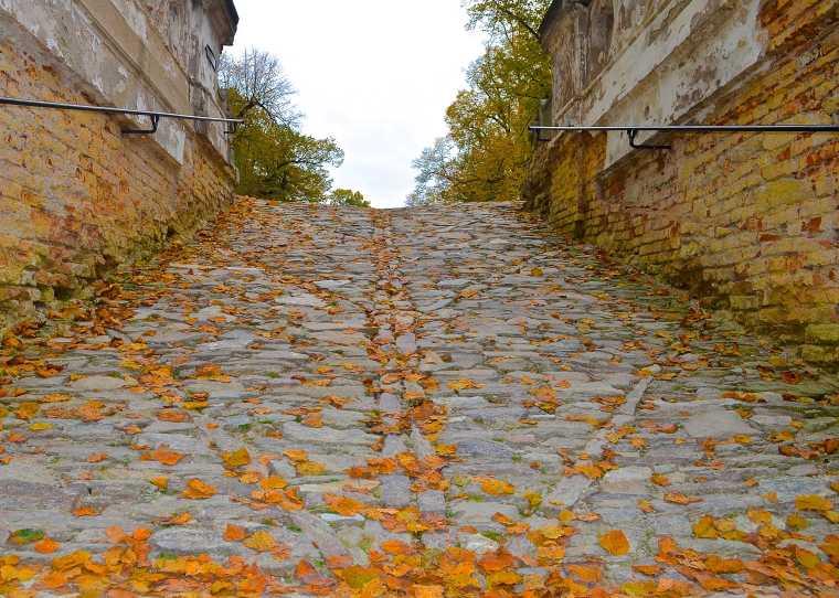 Cesky Krumlov_Castle_Garden_7