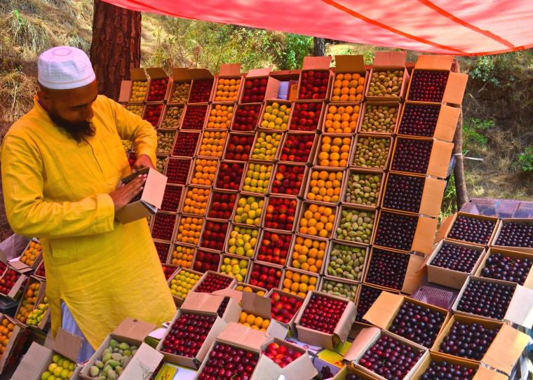 Fruit stall_Kasauli Hills_Kasauli.jpg