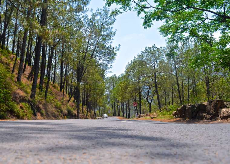 Kasauli road_Kasauli.jpg