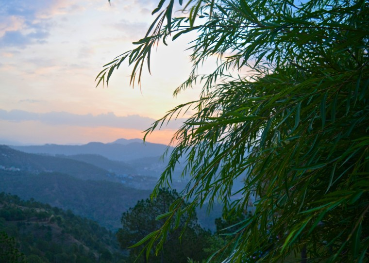Sunrise_Seclude_Kasauli_2