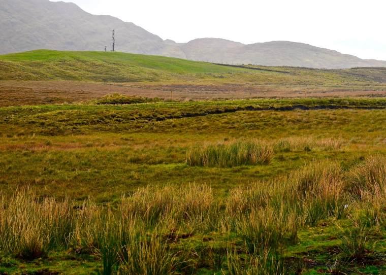 Connemara_Ireland_bogland_2
