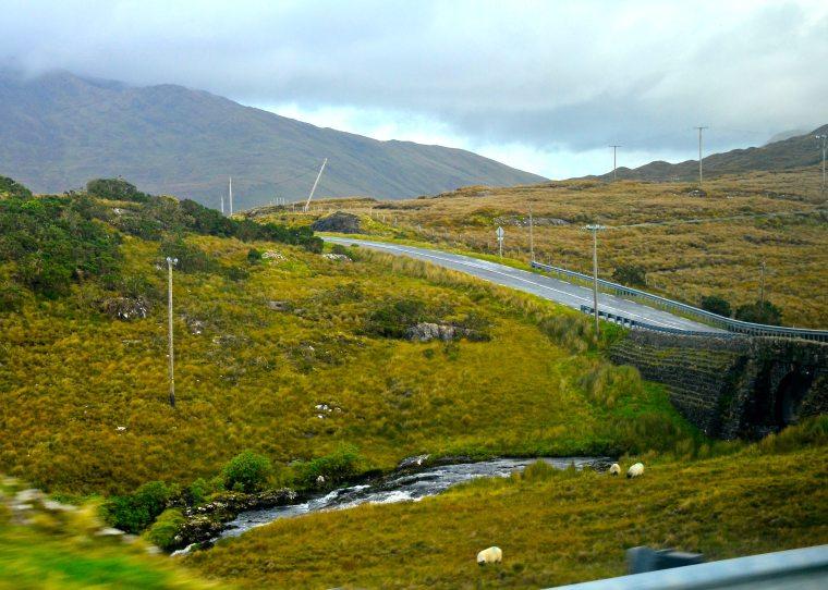 Connemara_Ireland_bogland_4