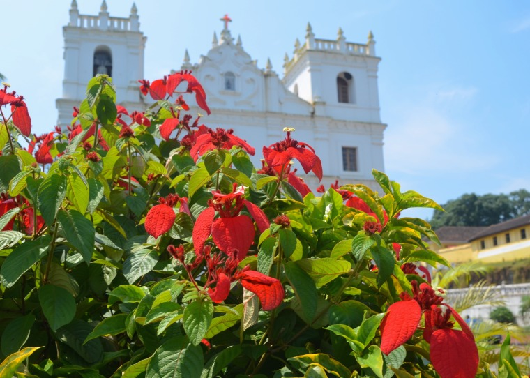 Goa_Churches_6