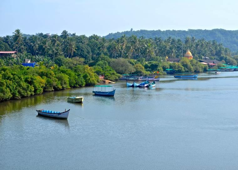 Goa_Rural Landscape_1