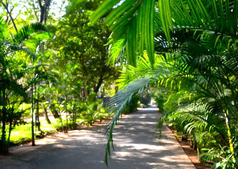 Madurai_Heritage Madurai_13