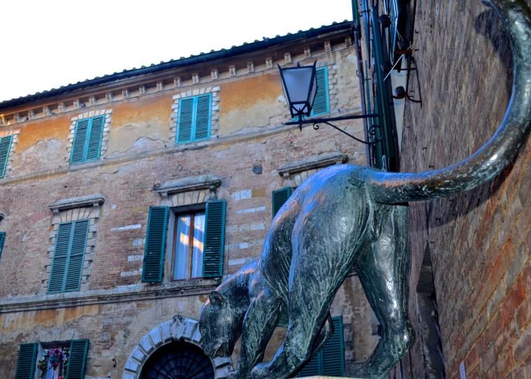 Siena_Tuscany_Street_4